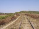 Omgeving Ardenica